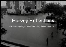 Camden Spring Creek Harvey Recovery